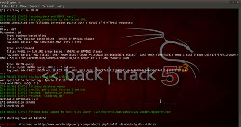 sqlmap tutorial kali linux tutorial sql injection dengan sqlmap kali linux
