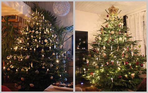 weihnachtsbaum lieferservice aufstellservice christbaumdealer by steven h 228 mmerle
