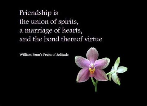 day celebration quotes on friendship day