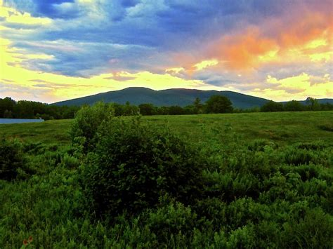 summer in the country photograph by elizabeth tillar