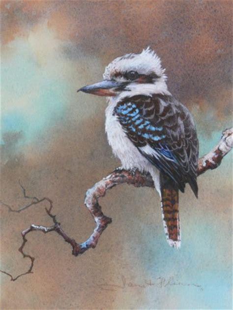 kookaburra australian bird painting by janet flinn