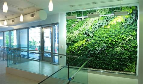 indoor hydroponic wall garden 6 facts that you should know about indoor garden