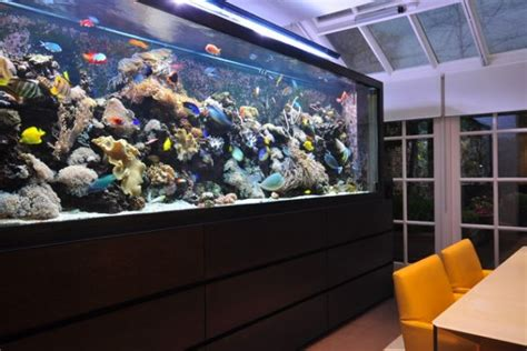 Aquarium In Dining Room by Five Fish Themed Dining Room Design Ideas