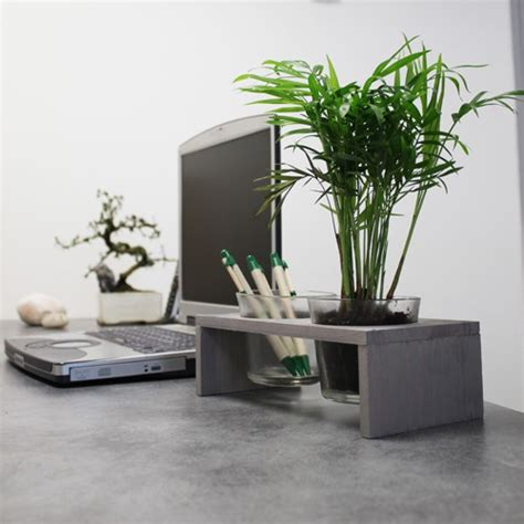 plante pour le bureau comment bien choisir sa plante de bureau avec made in