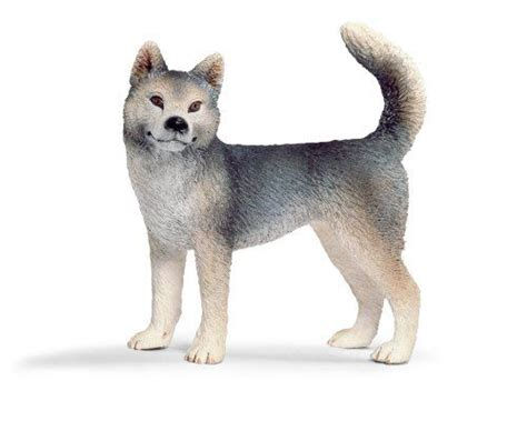 Aqila 2in 1 schleich husky by schleich 6 14 fact