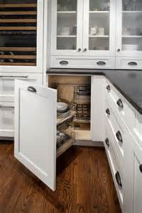 Kitchen Cabinet Options 5 Amazing Kitchen Cabinet Storage Options You Need To See The Kitchen Express Fast