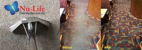nu life upholstery carpet cleaning burlington professional carpet cleaning