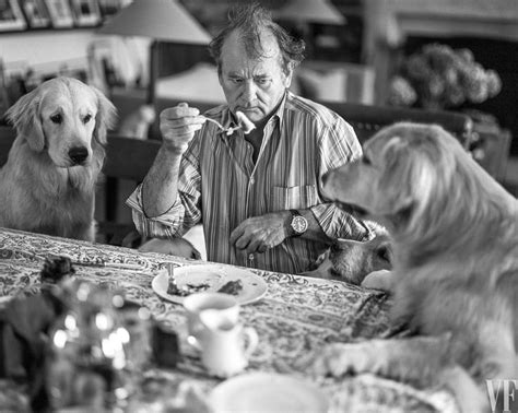 bruce weber golden retrievers work we bruce weber pawpost