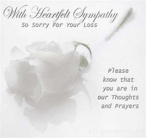 sorry for the loss of your sorry for your loss quotes and sayings quotesgram