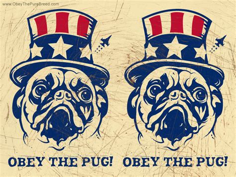 obey the pug pug wallpaper unclesam breed and cat t shirts mugs gifts