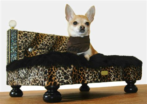 best beds for chihuahuas