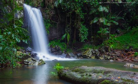 7 amazing waterfalls in northern nsw and gold coast