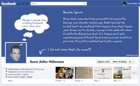 themes on facebook timeline 2013 facebook cover pictures hd wallpapers