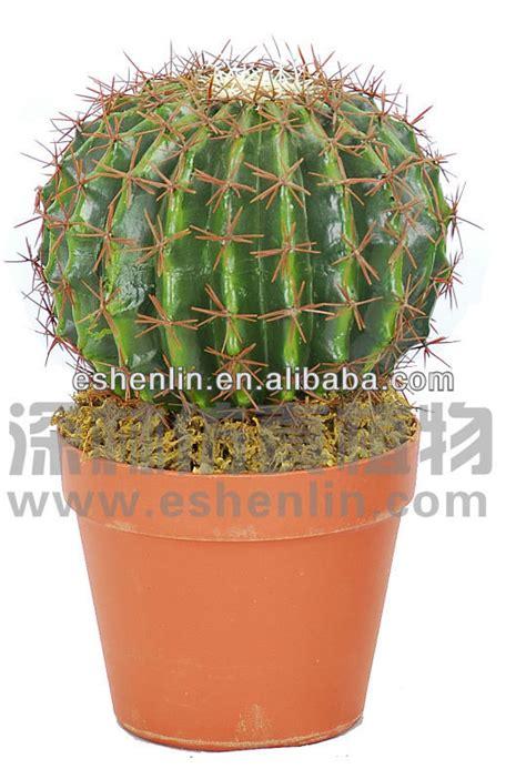 grand cactus plantes d int 233 rieur artificielle en plein