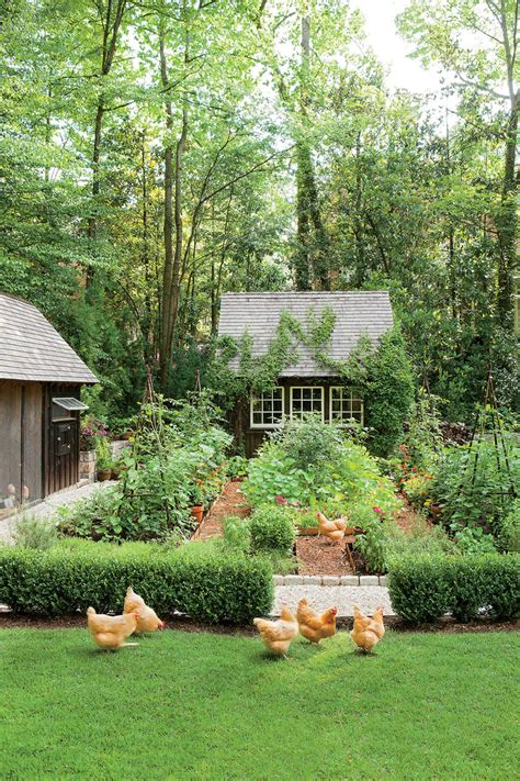 southern backyard how to attract snakes to your yard southern living