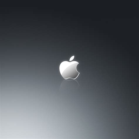 wallpaper apple grey grey apple logo ipad wallpaper ipadflava com