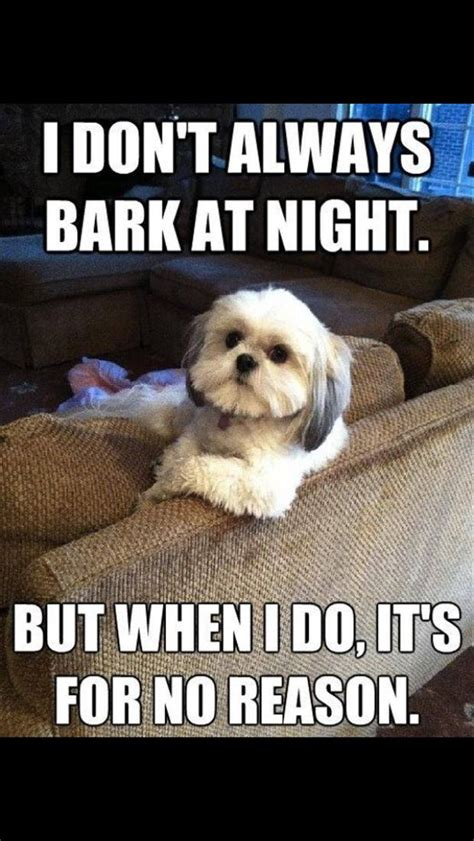 Dog Barking Meme - dog training manual september 2016