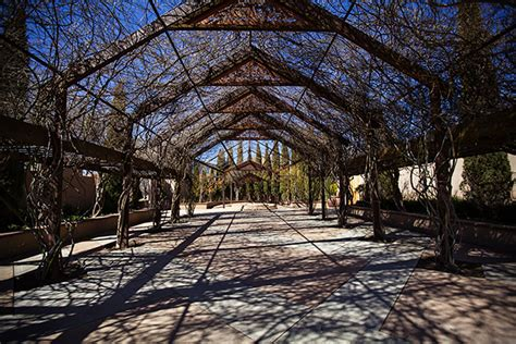 Albuquerque Botanical Gardens Wedding Abq Bio Park Albuquerque Nm Travel Heals