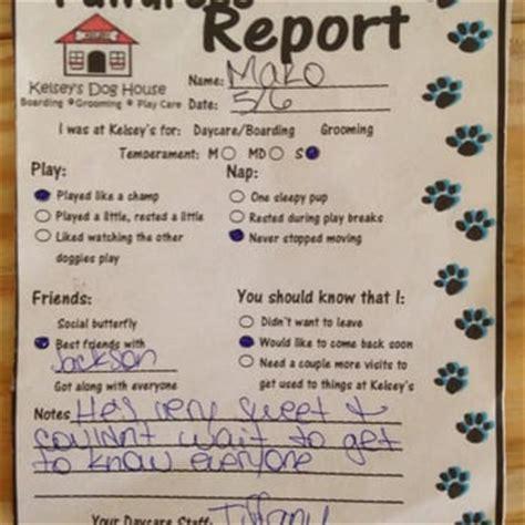 kelseys dog house kelsey s dog house 17 photos 56 reviews pet groomers