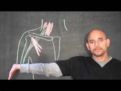 Car Doctor Atlanta by Thoracic Outlet Exercises Car Doctor