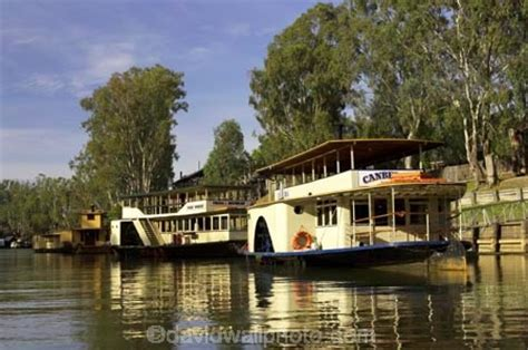 paddle boats canberra canberra and pride of the murray riverboats murray river