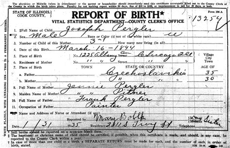 Birth Census Records 1920 Chicago Ill Census