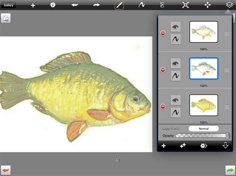 sketchbook pro new layer autodesk sketchbook pro kalbag