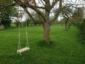 tree rope swing ideas large green lawn combined with big and high trees
