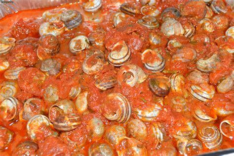 come si cucinano le lumache di mare lumache al sugo sardegnammy