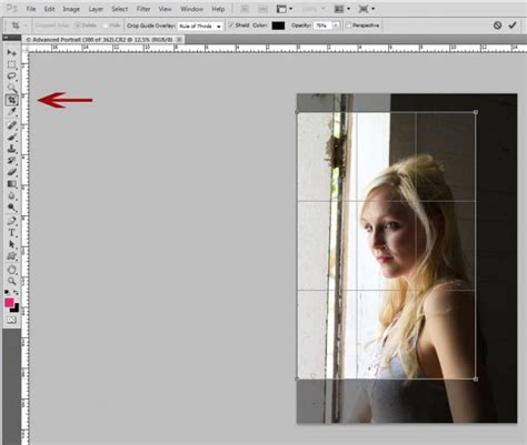 reset crop tool photoshop understanding cropping versus resizing in photography