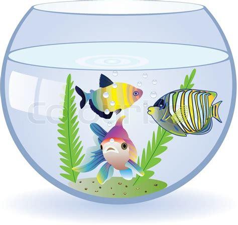 aquarium design eps vector aquarium and fishes stock vector colourbox