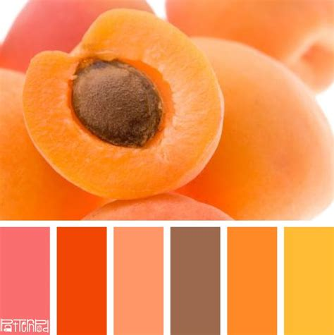1000 images about color combinations on paint colors hue and kitchen colors