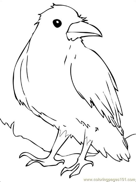 Raven Coloring Page Free Printable Coloring Pages Ravens Coloring Pages