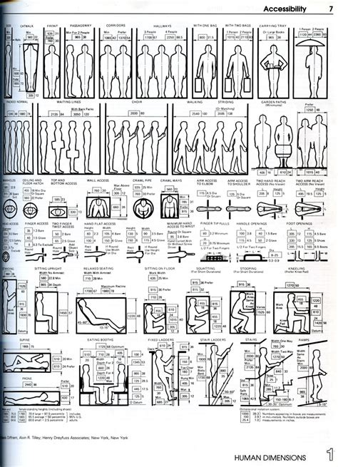 graphic design guidelines 1000 images about human dimensions in space on pinterest