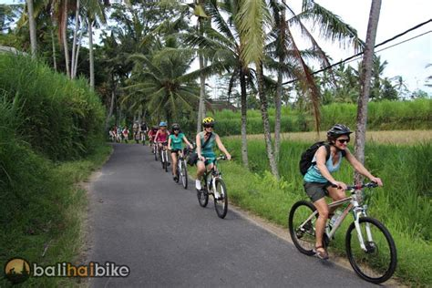 group bike   balis countryside bali hai