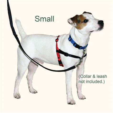 no pull harness for dogs halti harness no pull harness supply discover