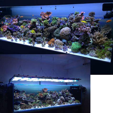 uv le aquarium aquarium lighting measuring par groups