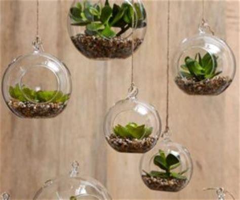 unconventional ways  display plants