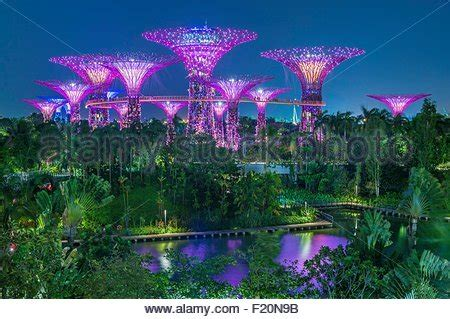 singapore botanic gardens marina bay singapore marina bay garden by the bay botanic garden