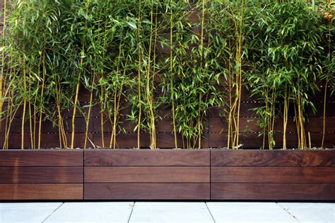 bamboo planter box screen for along back fence