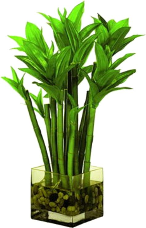 Artificial Planters by 1000 Ideas About Artificial Plants On