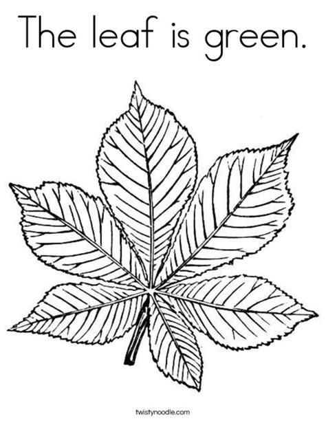 green leaf coloring pages the leaf is green coloring page twisty noodle