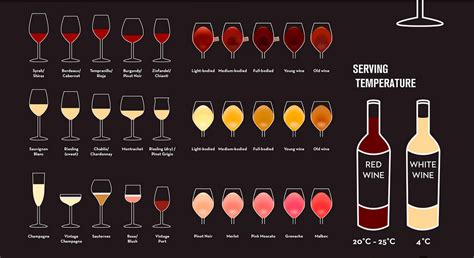 a beginner s guide to a beginner s guide to wine
