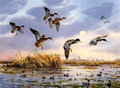 duck hunting painting