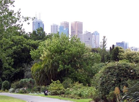 How To Experience The Best Of Melbourne For Under 99 A Botanical Gardens Melbourne Cafe
