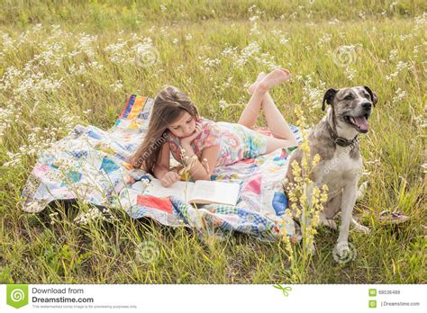 big friendly dogs and big stock photo image 68536489