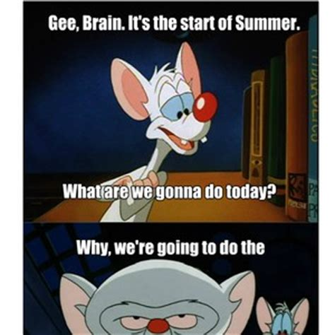 Pinky And The Brain Meme - meme pinky quotes quotesgram