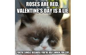 Grumpy Cat Meme Valentines Day - the 30 best grumpy cat memes you can respond to emails