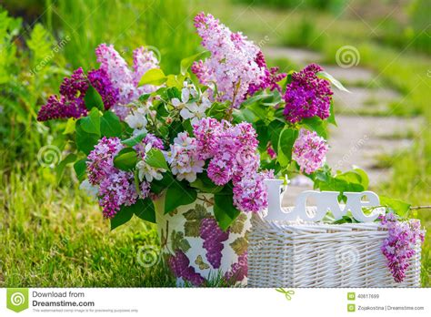 beau bouquet de lilas dans le jardin photo stock image