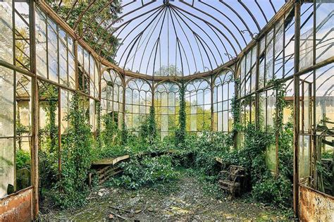 Glass Roof House this abandoned greenhouse retains a wild elegance urban